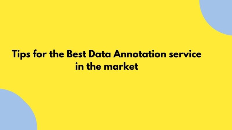 Tips for the Best Data Annotation service in the market