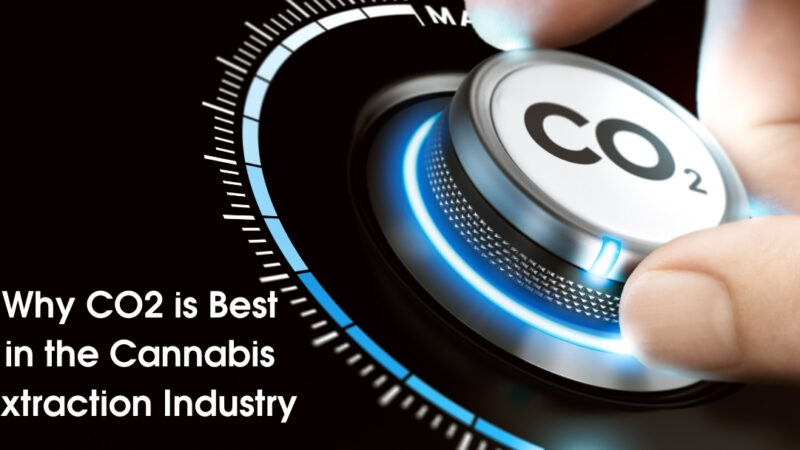 Why CO2 is Best in the Cannabis Extraction Industry