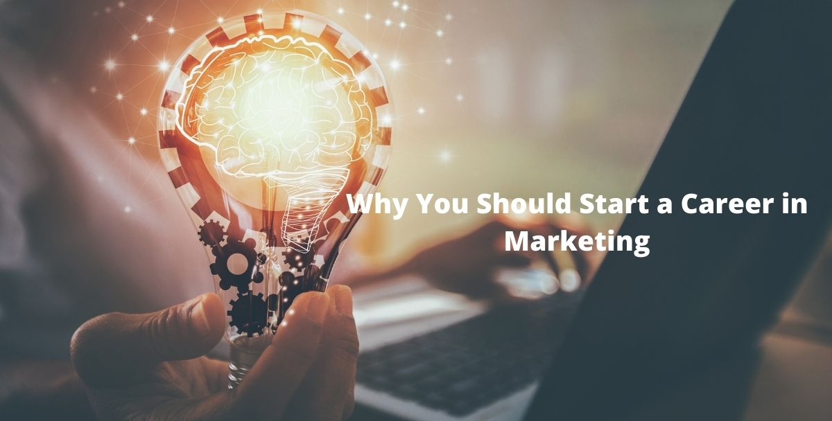 Why You Should Start a Career in Marketing