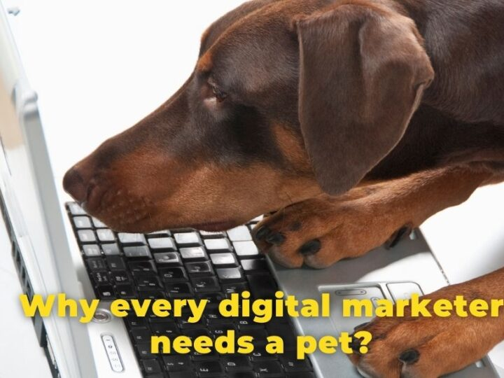Why every digital marketer needs a pet?